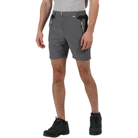 Regatta Sungari II Shorts Heren, magnet/black